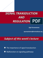 Signal Transduction and Regulation Lecture 1 Pw Point 2003