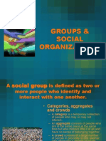 8 Groups and Social Organizations
