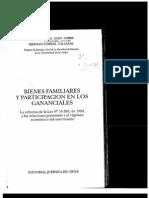 Bienes Familiares y Participacion en Los Gananciales Prologo 1996