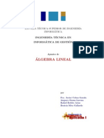 Apuntes Algebra Lineal U. Federico Santa Maria