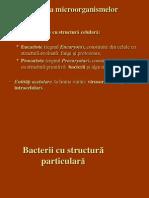 Curs 2-3-2010 Stomato
