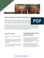 Equinox | Equine Guided Leadership Training