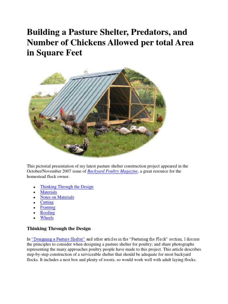 raising chickens and planning for them framing construction