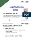 SBV 2005