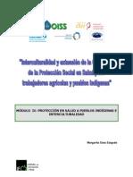 48 - Protección en salud a  pueblos indígenas e interculturalidad