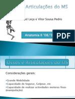 Ossos e Articulações do MS