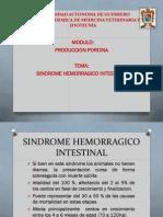 SINDROME HEMORRAGICO EN CERDOS.pdf