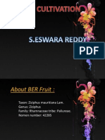 Ber Production Technology-ESWAR