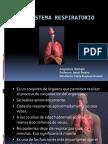 Sistema Respiratorio Visión.ppt