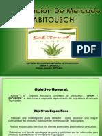 Presentación INV. FRANCIS (3)