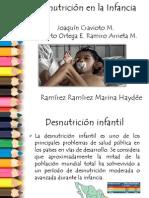 Desnutricion en La Infancia