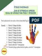 FUNCIONALIDAD DE EXTREMIDAD SUPERIOR ESCALA DE KAPANDJI PARA PINZA Y OPOSICIÓN