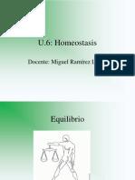 U6. Homeostasis