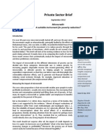 UNDP private sector brief II - Microcredit
