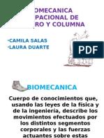 Biomecanica Ocupacional de Hombro y Columna