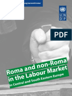 Roma and non Roma in the labour market
