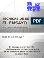 TE - Ensayo - Nov 2012