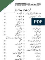Ameen1.pdf