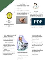 Leaflet CA Gaster