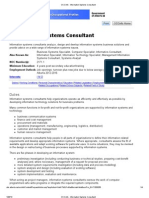 Information Systems Consultant
