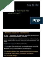 Materia e Energia Nos Ecossistemas