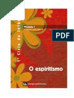 Apostila FEB - DIJ-1º Ciclo de Infância - Módulo-I - O espiritismo