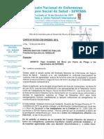 Carta Nro 153 Sg-cen Sinesss - 2013