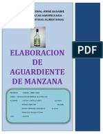 AGUARDIENTE DE MANZANA.docx