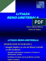 17 US Renal - Litiaza 2003