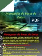 manejadordebasededatos-100714114046-phpapp02