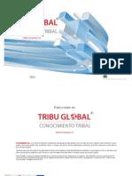 Tarifas Publicidad Tribu Global II Semestre 2013