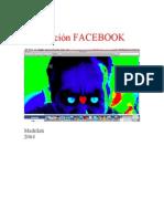 Declaracion Facebook