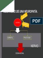 MECANISMO NEUROPATIA