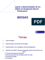 87 3 Panel I Biogas