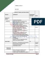 Programa de Trabajo Auditoria Interna