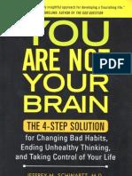 Jeffrey Schwartz - You are not your brain book exercises