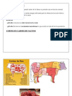 4.- Carnes pH Cortes
