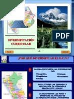 Diversificacion Universidades Final 1