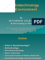 Nanobiotechnology and environment