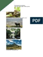 Biodiversidad de Los Departamentos de Guatemala
