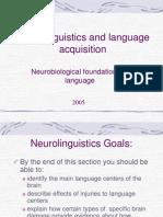 Neurolinguistics and Language Acquisition