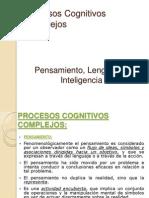 Procesos Cognitivos Complejos_pensamiento Lenguaje Inteligencia