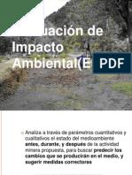 Exposicion de Impacto Ambiental de La Mineria