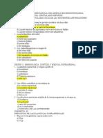 Embriologia Preguntas Endocrinologia