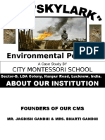Case Study on Environmental Pollution