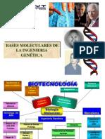 Genetica Final