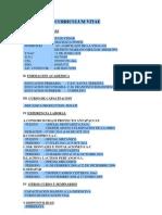 Curriculum Vitae Mecanico
