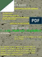 Ecologia de bosques Conceptualización