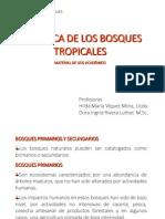 Dinamica de Los Bosques Tropicales