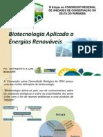 Biotecnologia Energia Renovavel